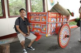 Beautiful cart! , Barbara D - August 2011