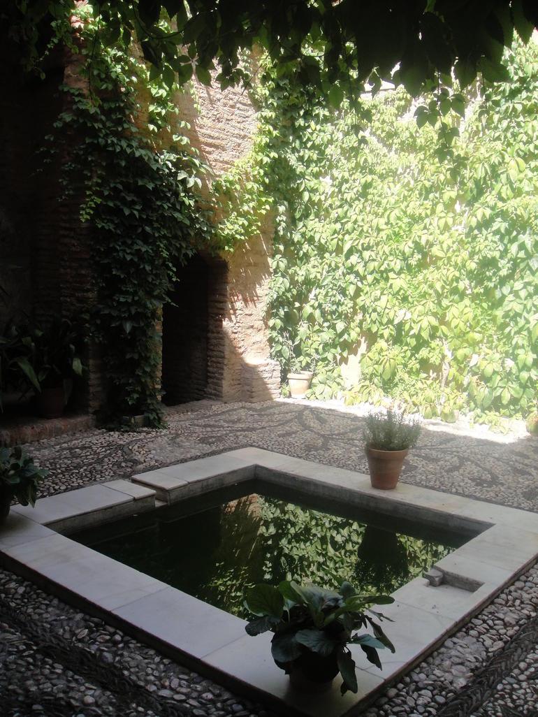 Granada and Albaicin Walking Tour - Granada