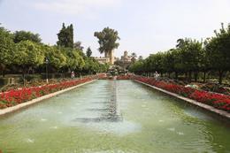 From one of the lovely gardens in Cordoba. , John Axel S - October 2011