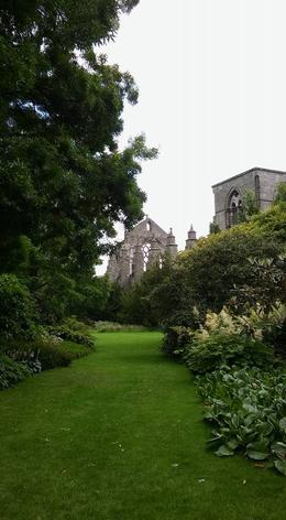 Holyrood Abbey from the gardens. , Kelsey C - February 2017