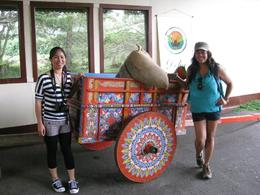 Super cute cart! , Barbara D - August 2011