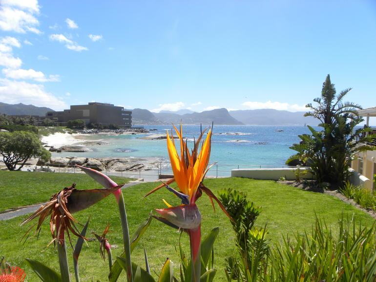 honeymoon 275 - Cape Town