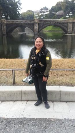 We were only outside but we can see the grandeur of the Imperial Palace. , Catherine C - April 2014