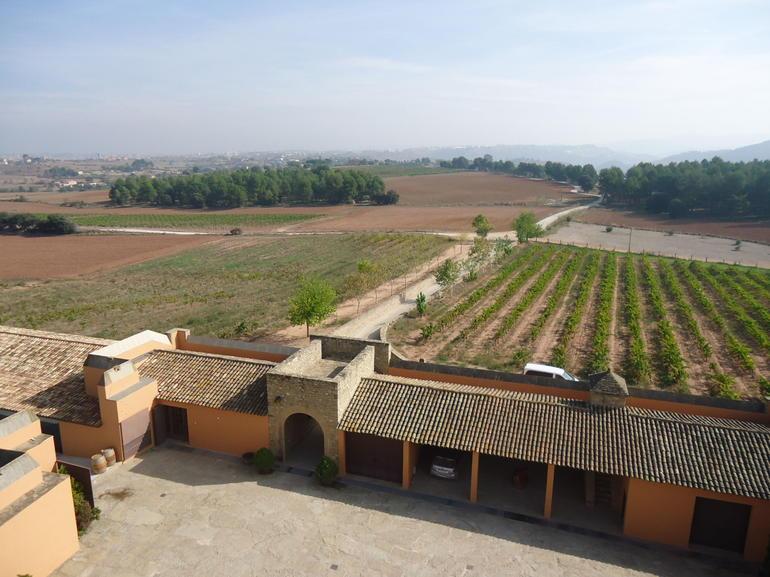 Oller Del Mas wine tasting experience - Barcelona