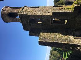 Blarney Castle , mynpyn - October 2017