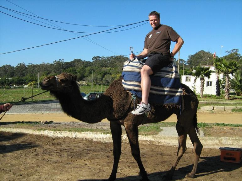 Camel ride - Costa del Sol