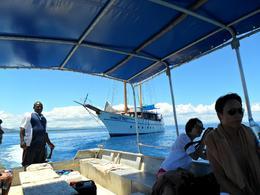 off the boat, greg d - November 2010