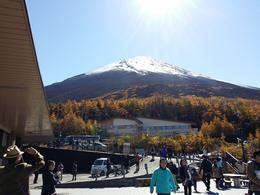 This was the best tour we had seeing mt.fuji clearly in good weather. , lotlot - January 2015