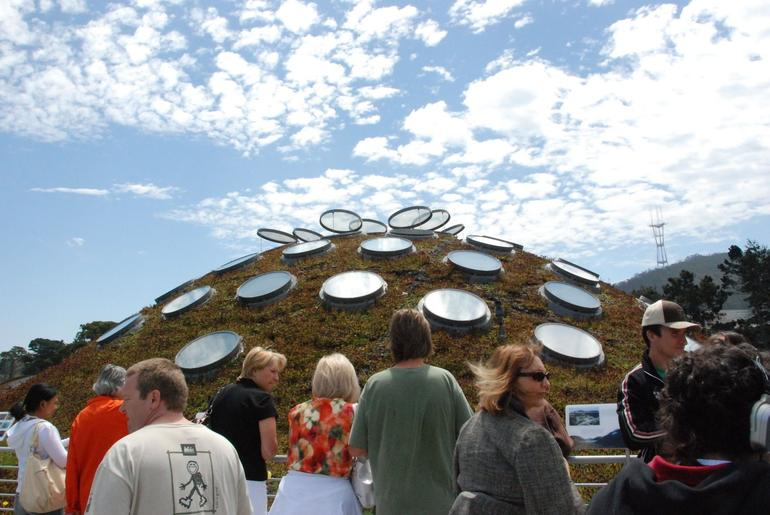 The Living Roof - San Francisco