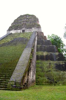 Tikal! , Maree J - February 2014
