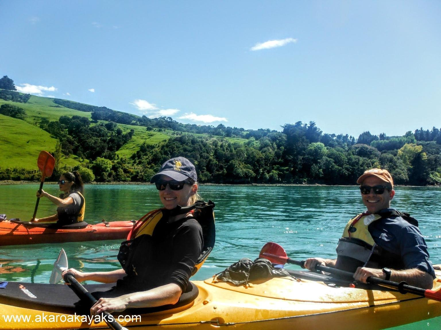 MÁS FOTOS, Shore Excursion: Guided Sea Kayaking through Akaroa Marine Reserve