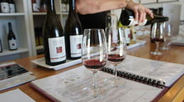 Our first tasting of the tour. I'm still dreaming about the 2013 pinot noir., emmaknock - February 2016