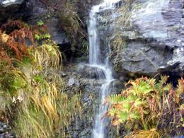 Very nice nature!, Christos P - November 2010