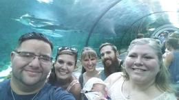 Watching the passing sealife was awesome!, Gpo - August 2016