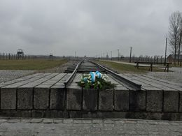 Flowers at the end of the rail in front of the memorial monument at Birkenau , Mira P - March 2015
