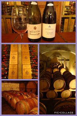 Chateauneuf-de-Pape wine tasting , Nancy B - August 2017