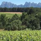 Montserrat con almuerzo y cata de vinos gourmet incluidos, Barcelona, ESPAÑA