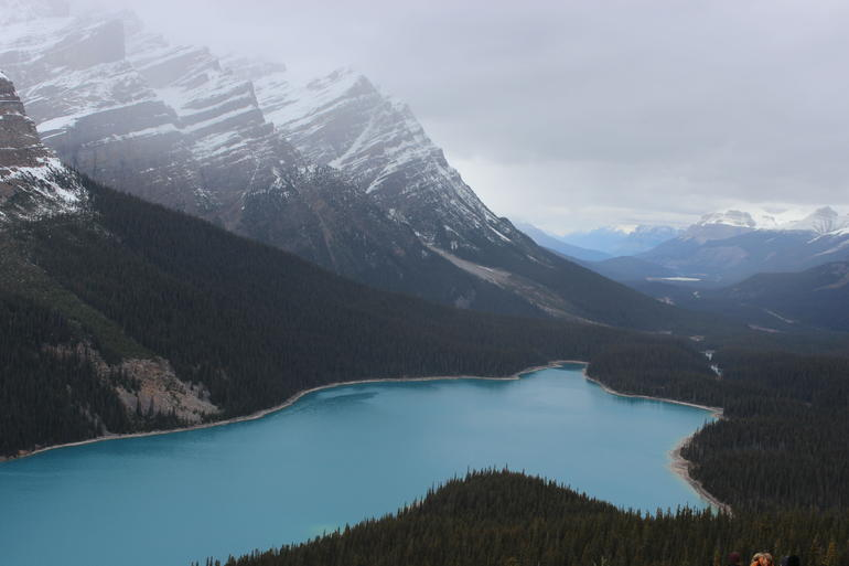 Lake Louise and the Icefield Parkway - Full-Day Tour