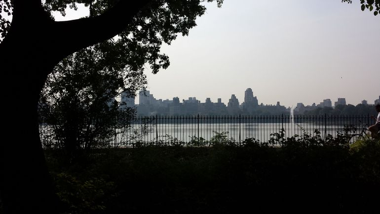 NYC Central Park Bike Rental photo 23