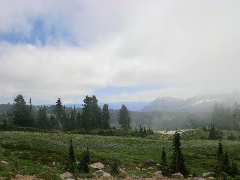 Mount Rainier national Park (8) - Seattle
