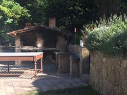 Pizza oven at the farm house , Katharine - June 2017