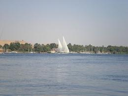 Felucca ride on the Nile in Aswan, on the way to the Botanic Gardens - June 2008