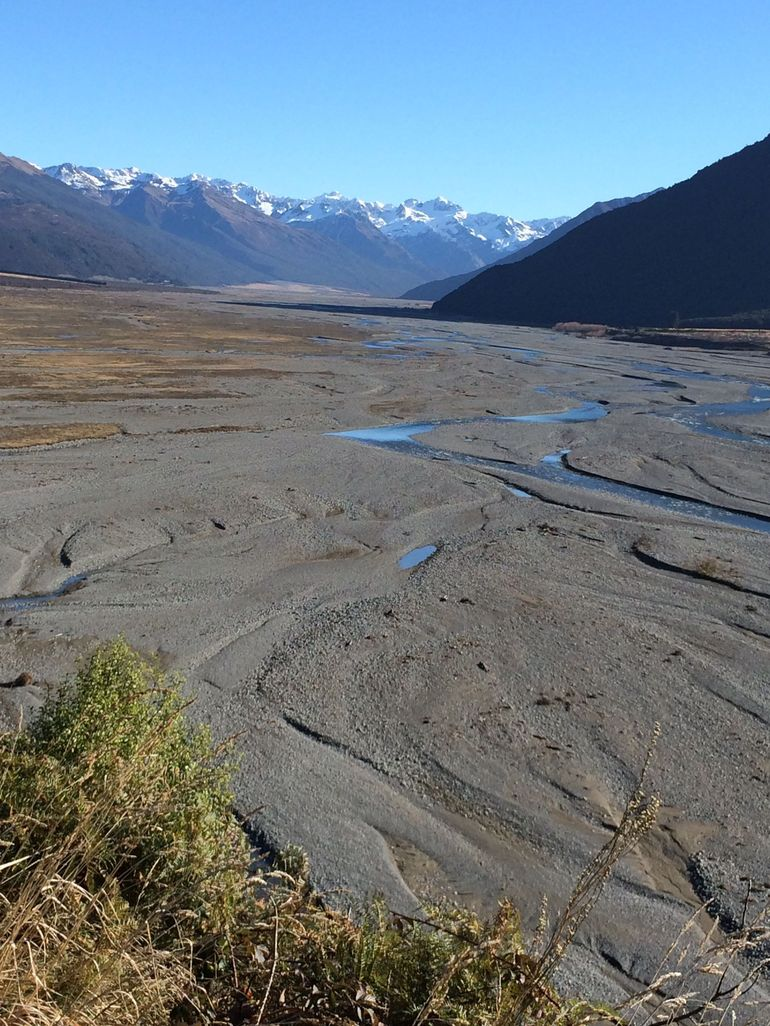 Arthur's Pass Full-Day Tour Includes TranzAlpine Express Train from Christchurch photo 12