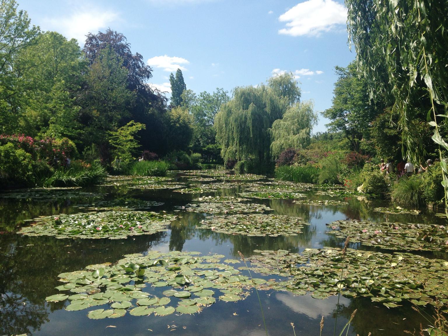 MÁS FOTOS, Excursión de un día para grupos pequeños a Giverny y los jardines de Monet desde París