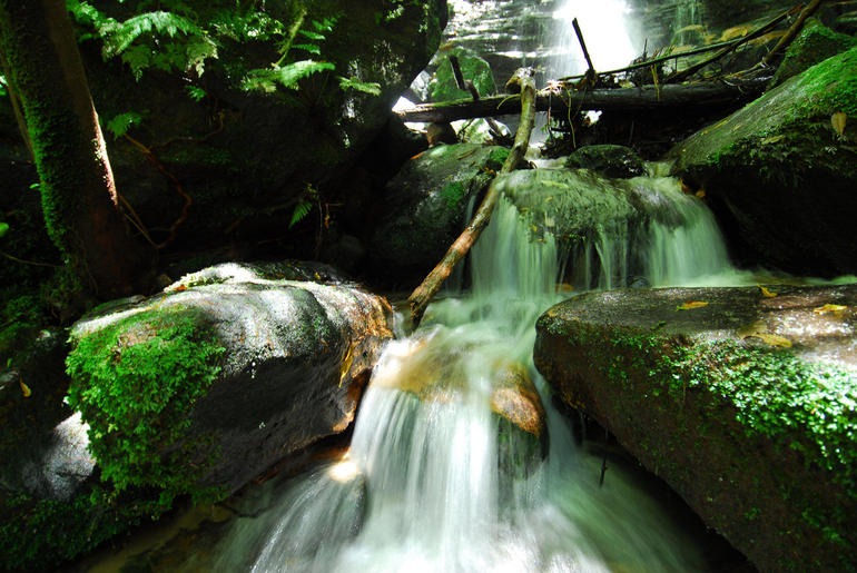 Nice Waterfalls - Sydney
