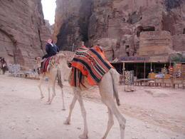 Exploring the beautiful city of Petra, sarahm - April 2014