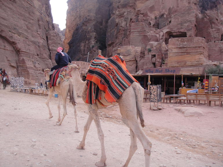 Private Three Day Tour to Petra - UNESCO World Heritage Site photo 13