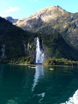 This was one of the many beautiful sights that greeted us on the Milford Sound cruise. , Shivi S - July 2016