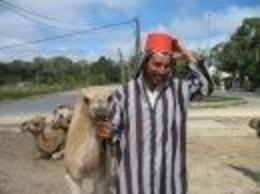 A man in a red fez with a baby camel posed for pictures in Morocco. - July 2009