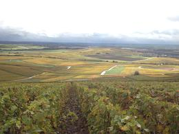 View of the Marne Valley in Champagne in the Fall! Beautiful! , Hfamily - November 2013