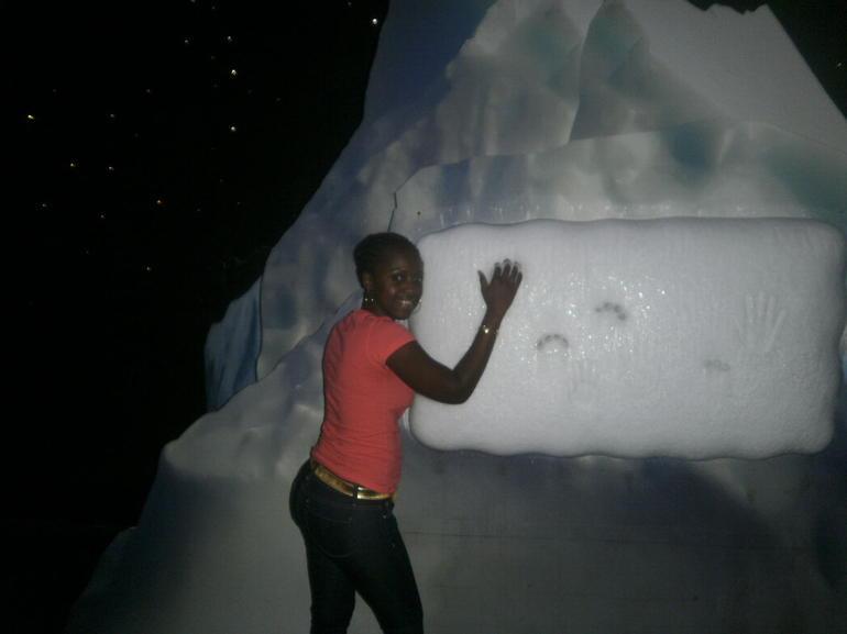 feeling the iceberg - Orlando