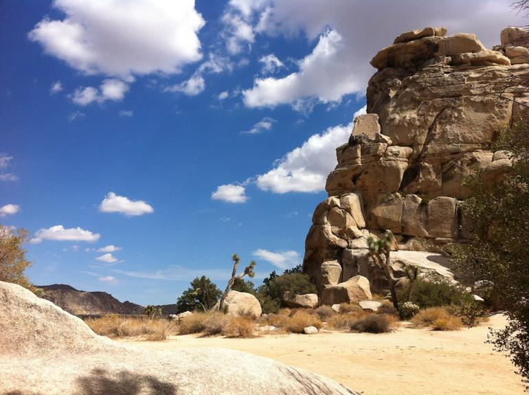 Joshua Tree National Park - Palm Springs