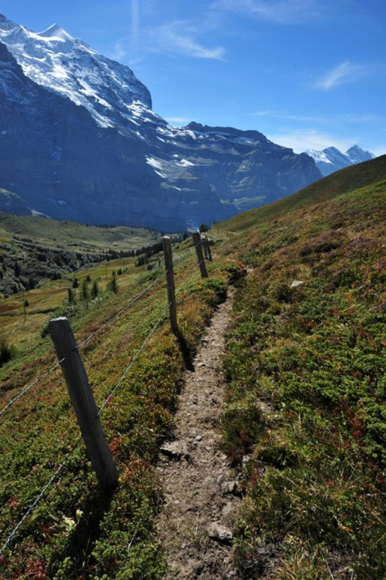 Eiger and Jungfrau Panorama Day Trip from Lucerne photo 13