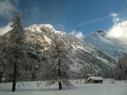 View from the Bernina Express , Mondoni C - January 2011