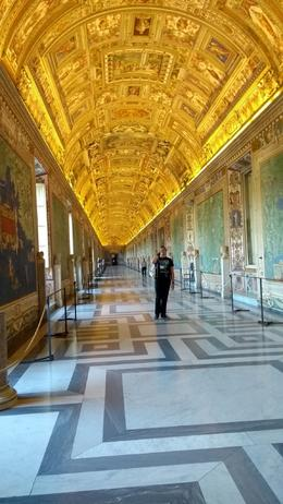 A brilliant way to explore the Vatican museum without the crowds , Judi B - August 2017