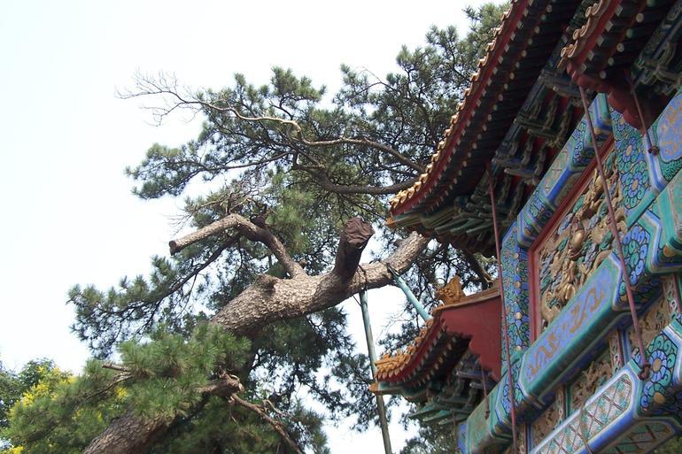 beijing summer palace (2).jpg - Beijing