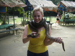 Snakes @ Deer Land , Kathryn S - July 2011