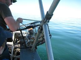 Hauling up the crab pots off Lummi Island., Skootre - October 2010