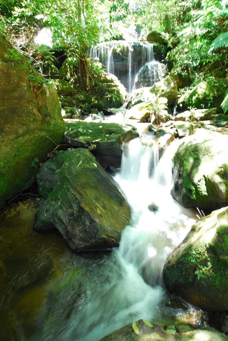 Mossy Falls - Sydney