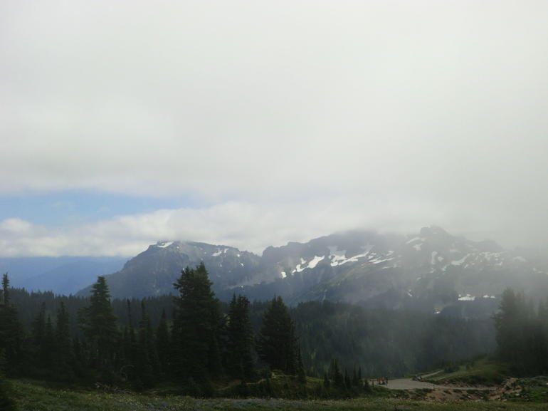 Mount Rainier national Park (10) - Seattle