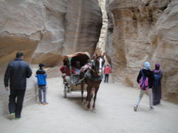 Exploring the beautiful city of Petra, sarahm - April 2014