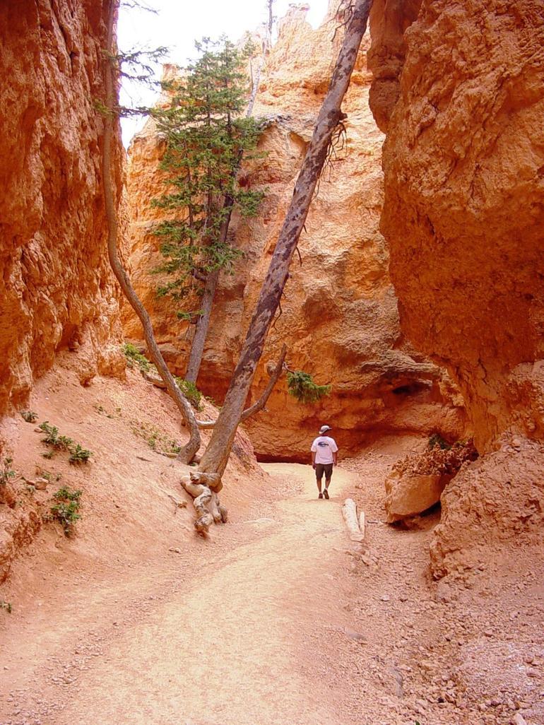 Bryce Canyon National Park - Las Vegas