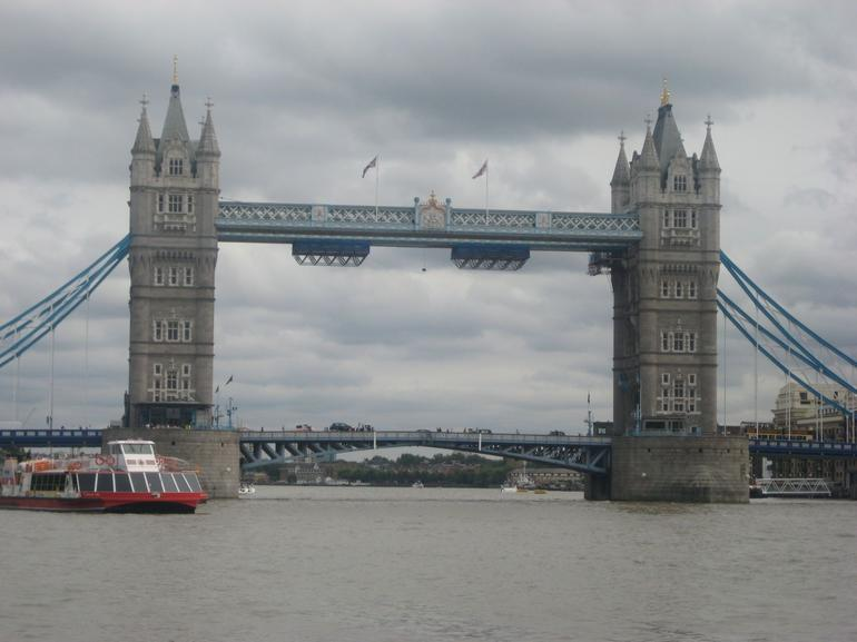 Cruise along the Thames River, London - London