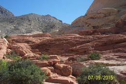 Red Rock Canyon hike , Laura G - July 2015