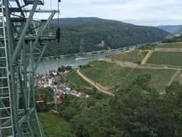 The optional ride down the ski lift was spectacular with views of the Rhine and the vineyards , buddy.bland - August 2015