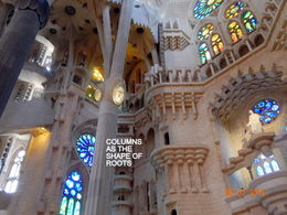 Inside the church shows how Gaudi brought nature in to his designs. , Harry R - June 2015